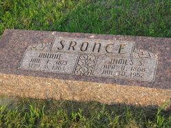 Minnie Jane <i>Pitchford</i> Sronce
