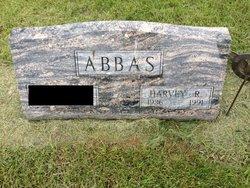 Harvey R Abbas