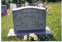 Wesley Austin Ned Walker