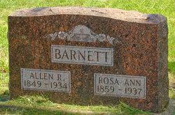 Allen Riley Barnett