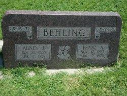 Franz Albert Gottlieb Behling