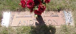 Willard E Anderson