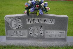 Cecil Brown, Jr