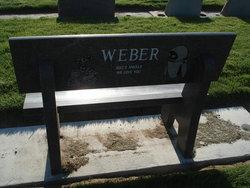Ronald Eugene Ron Weber