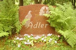 Horst T. Adler