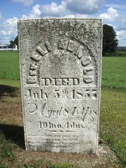 Rev Eli Arnold