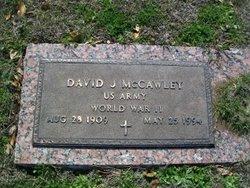 David J. McCawley