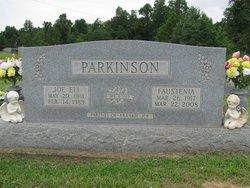 Vera Faustenia <i>Pillow</i> Parkinson