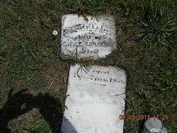 Nellie M Lincoln