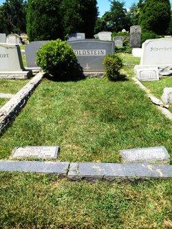 Leonore <i>Rosenthal</i> Goldstein