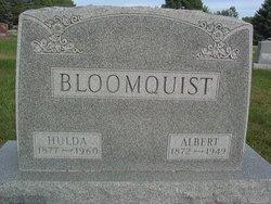 Albert Bloomquist