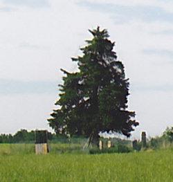 Baldwin Family Cemetery