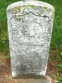 Sherman F. Ansley