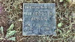 Charles A Bower, Jr