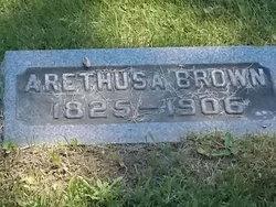 Arethusa Brown