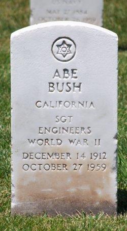 Abe Bush