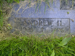 Andrew H Brown