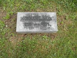 Norman L. Baer