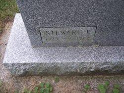 Stewart E Danby