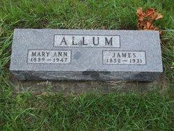Mary Ann <i>Fulcher</i> Allum