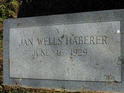 Aurelia Jouane Jan <i>Wells</i> Haberer