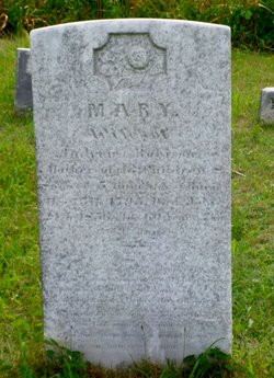 Mary Robison