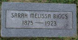 Sarah Melissa Biggs