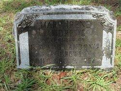 Mary Irene Andrews