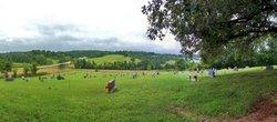 Field Creek Cemetery