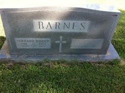 Bernard J Barnes