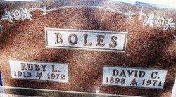 David Clarence Boles