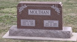 Henry Molthan