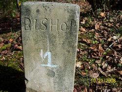 Bishop #1