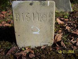 Bishop #2