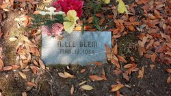 A Lee Beem