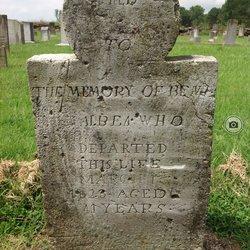 Benjamin Albea