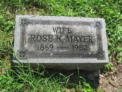 Rose <i>Knorr</i> Mayer