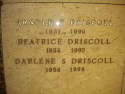 Darlene S Driscoll