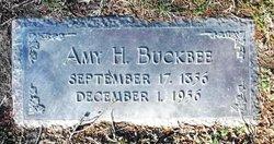 Amy H. Buckbee