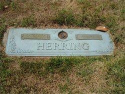 Annie Lennie <i>Foster</i> Herring
