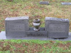 Allie H <i>Riley</i> Allison