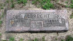 Herman F Albrecht