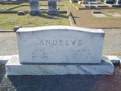William Gaines Andrews, Sr