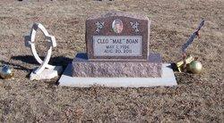 Cleo Mae <i>Welch</i> Boan