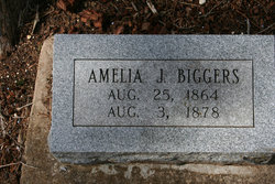 Amelia J Biggers