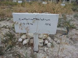 Catherine Ann Ahlstrom