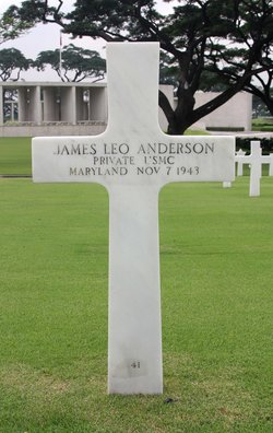 Pvt James Leo Anderson