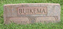 Berend Buikema