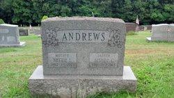 Nettie Lee <i>Davis</i> Andrews
