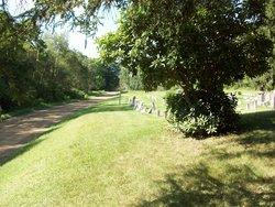 Radle Cemetery